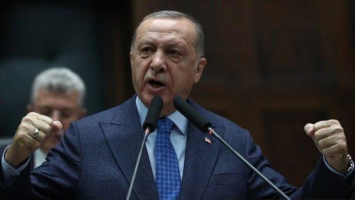 insultare erdogan reato