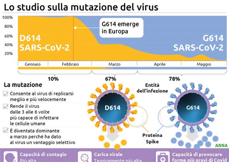 Ceppi coronavirus nuove mutazioni