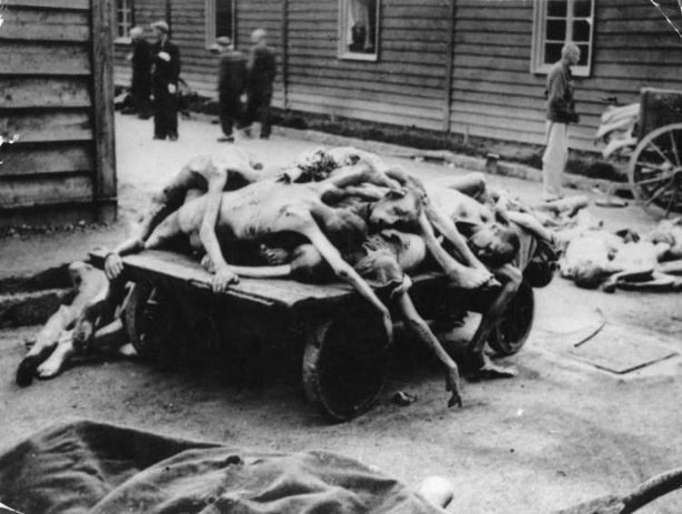 cadaveri Auschwitz