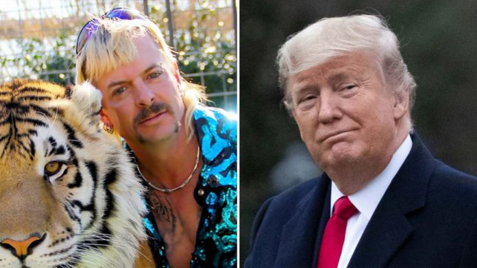 donald trump joe exotic grazia