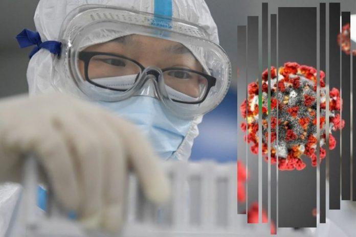 Coronavirus laboratorio Wuhan OMS