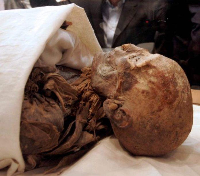 mummia parata maledizione
