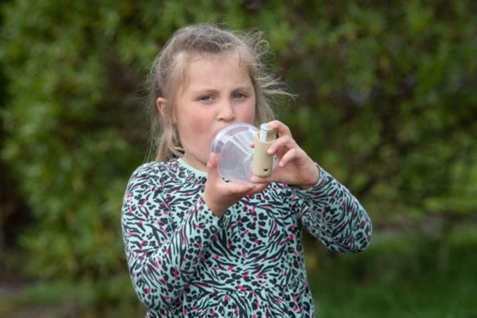 lucy asma inquinamento leah