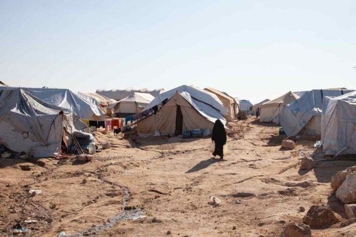 campo siria isis califfato