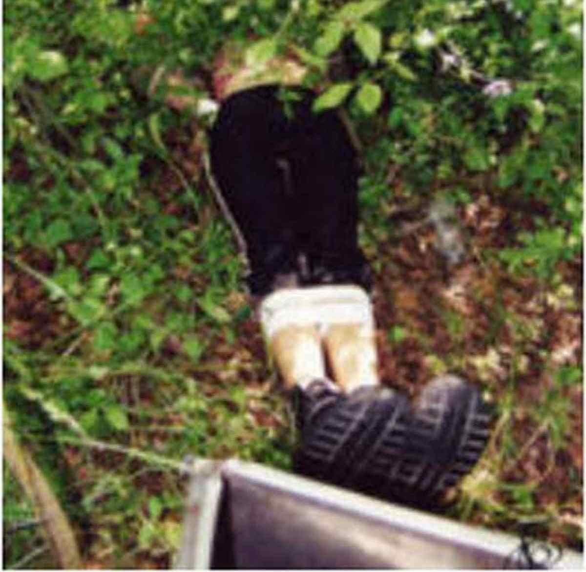 cadavere-serena-mollicone