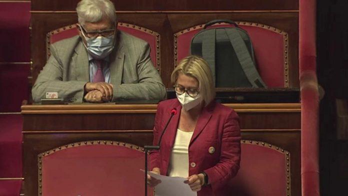 masini-forza-italia-senato-ddl-zan