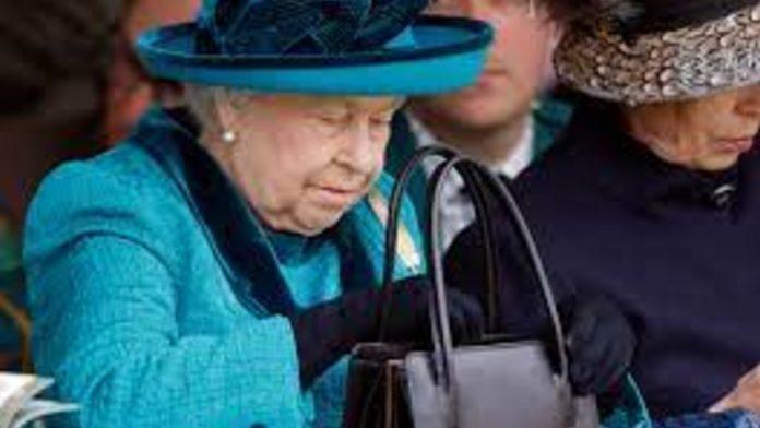 borsetta regina