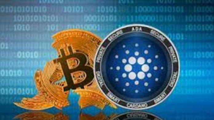 bitcoin cardano