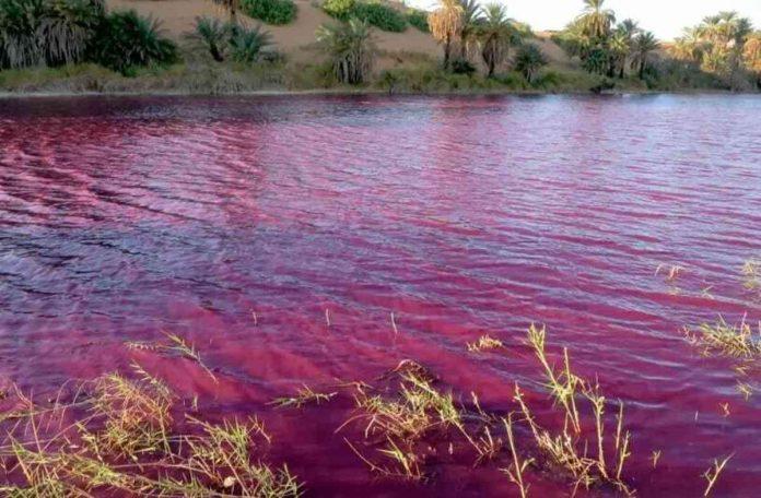 lago giordania rosso sangue profezia biblica